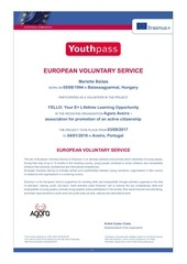 yello youthpass