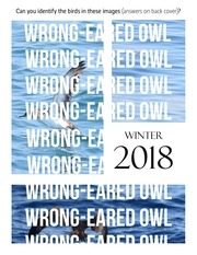 wrong eared owl winter 2018