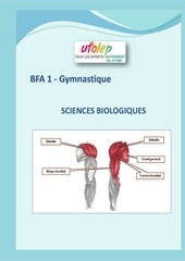 analyse technique et biomecanique de la gymnastique
