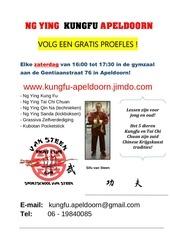 sportschool ng ying kungfu apeldoorn