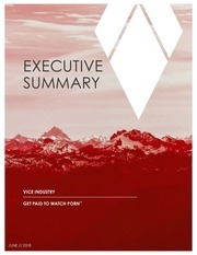 vit executive summary