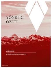 vit executive summary turkish