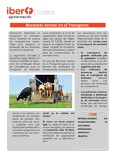plantilla cursos  transporte animal