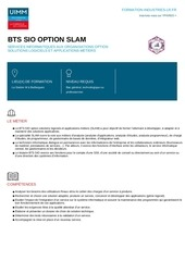 bts sio option slam