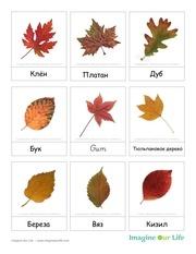 3partcards autumnleaves rus