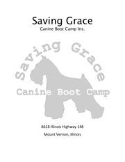 saving grace adoption applicaton and contract