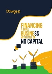 small business financing guide by dawgen global