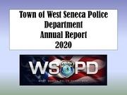 annual report 2020 pdf